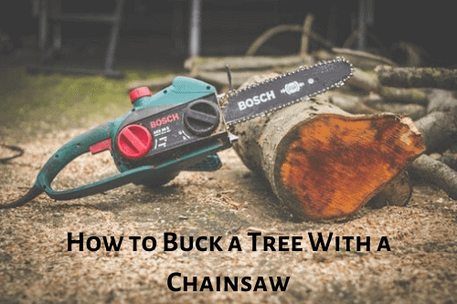 How to Buck a Tree With a Chainsaw